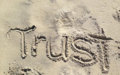 3 Reasons why trust is important in business